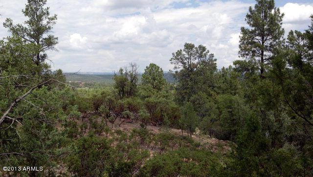 2902 E Hanging Rock, Payson, AZ 85541 (MLS #5643348) :: Yost Realty Group at RE/MAX Casa Grande