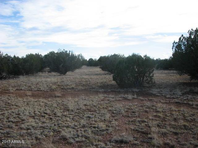 Sec 7 T14n, R16e: N2,Nw4,Sw4 - Cr, Heber, AZ 85928 (MLS #5643431) :: The Daniel Montez Real Estate Group
