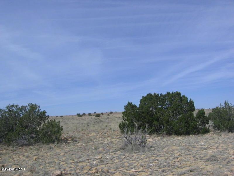 Lot 367 Chevelon Canyon Ranch #3 - Photo 1