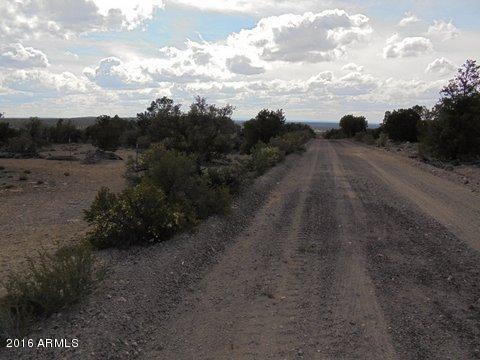 40 N County Road Sec31, Vernon, AZ 85940 (MLS #5645992) :: Cambridge Properties