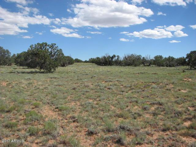 Lot 573 Chevelon Canyon Ranch #4, Overgaard, AZ 85933 (MLS #5650047) :: The Daniel Montez Real Estate Group