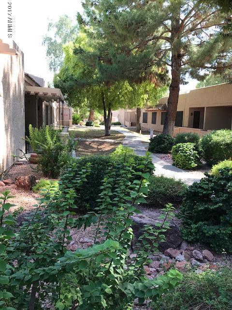 14300 W Bell Road #160, Surprise, AZ 85374 (MLS #5655834) :: Desert Home Premier