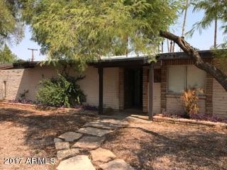 2509 S Palm Drive, Tempe, AZ 85282 (MLS #5659808) :: Group 46:10