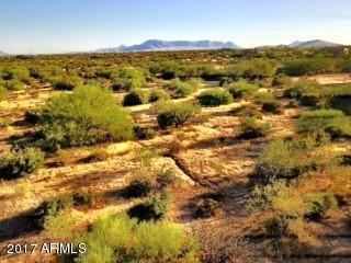 14219 E Dove Valley Road, Scottsdale, AZ 85262 (MLS #5662029) :: Brett Tanner Home Selling Team