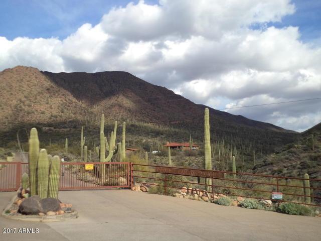 43112 N 79th Street, Cave Creek, AZ 85331 (MLS #5662303) :: Lifestyle Partners Team