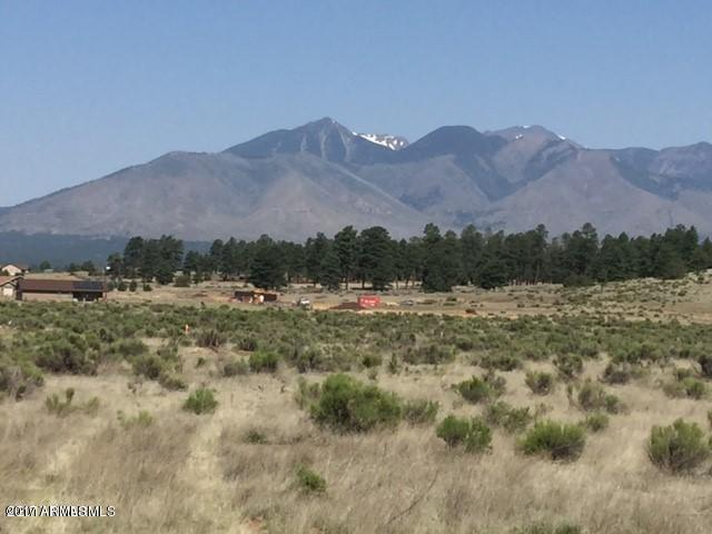9109 E Hayfield Road, Flagstaff, AZ 86004 (MLS #5662349) :: Five Doors Network