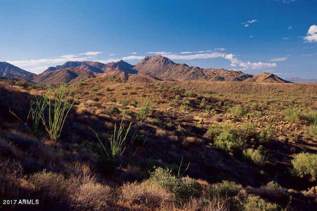 14611 E Prairie Dog Trail, Fountain Hills, AZ 85268 (MLS #5662696) :: Lux Home Group at  Keller Williams Realty Phoenix