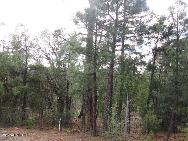 3500 W Falling Leaf Road, Lakeside, AZ 85929 (MLS #5664977) :: Occasio Realty