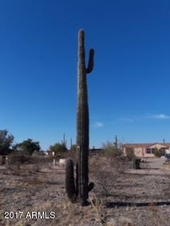 16620 W White Wing Road, Surprise, AZ 85387 (MLS #5681005) :: Scott Gaertner Group