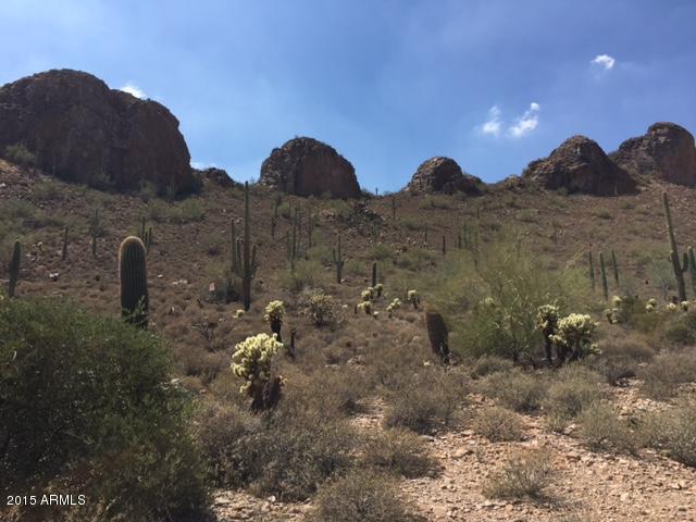 5364 S Gold Canyon Drive, Gold Canyon, AZ 85118 (MLS #5688893) :: The Pete Dijkstra Team