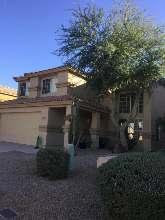 31223 N 43RD Street, Cave Creek, AZ 85331 (MLS #5690679) :: Arizona Best Real Estate