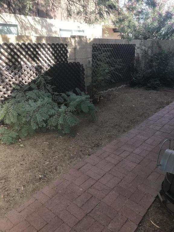 2024 S Playa, Mesa, AZ 85202 (MLS #5690915) :: Revelation Real Estate