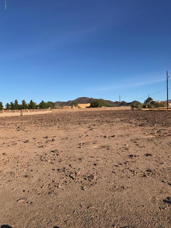 19 acre W Tanya Road, Phoenix, AZ 85086 (MLS #5690981) :: Revelation Real Estate