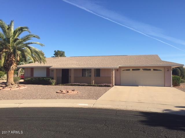 9205 W Raintree Drive, Sun City, AZ 85351 (MLS #5691094) :: Devor Real Estate Associates