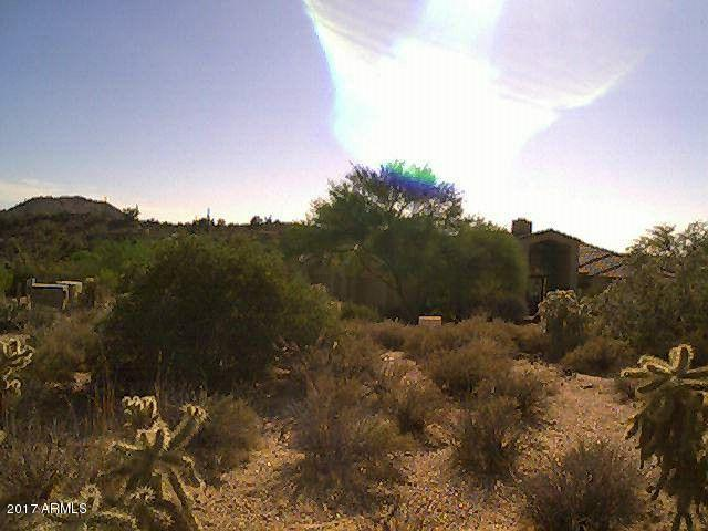 23987 N 112TH Place, Scottsdale, AZ 85255 (MLS #5692816) :: The Garcia Group @ My Home Group