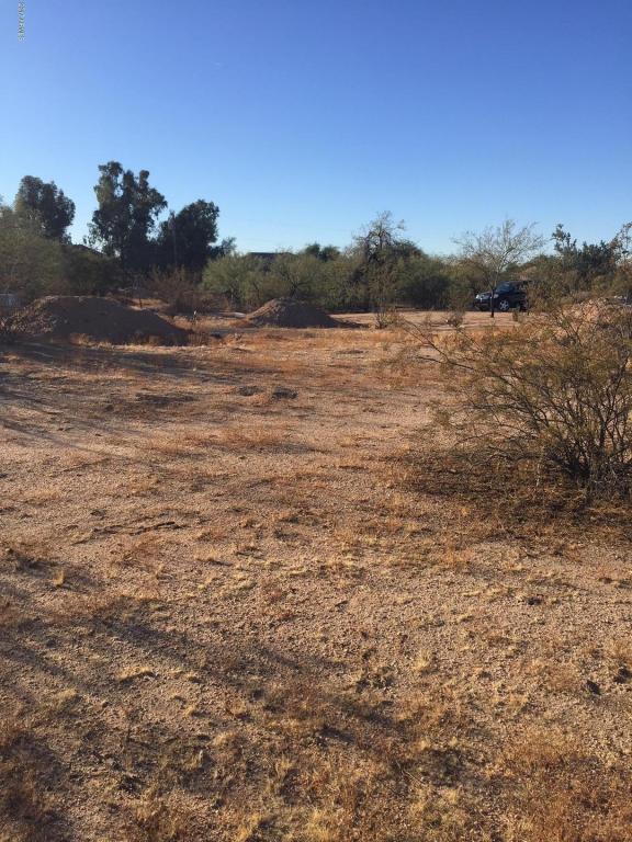 4310 E Red Bird Road, Cave Creek, AZ 85331 (MLS #5696659) :: Arizona Best Real Estate