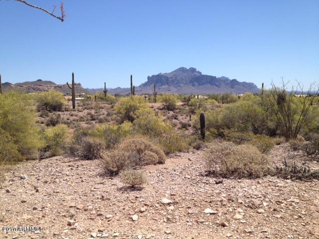 5025 N Idaho Road, Apache Junction, AZ 85119 (MLS #5697115) :: Realty Executives