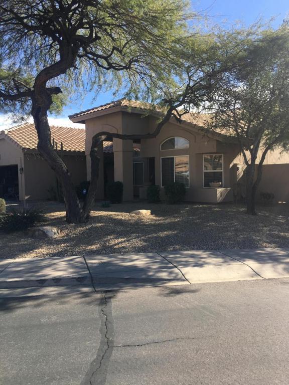9215 E Palm Tree Drive, Scottsdale, AZ 85255 (MLS #5697657) :: Power Realty Group Model Home Center