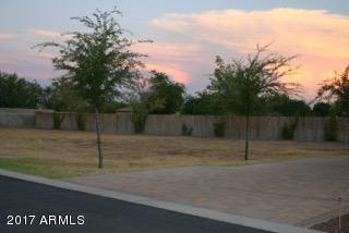16607 W Mohave Street, Goodyear, AZ 85338 (MLS #5699758) :: Kortright Group - West USA Realty