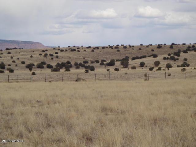 24101 W Crooked Horse Trail, Seligman, AZ 86337 (MLS #5706947) :: The Daniel Montez Real Estate Group