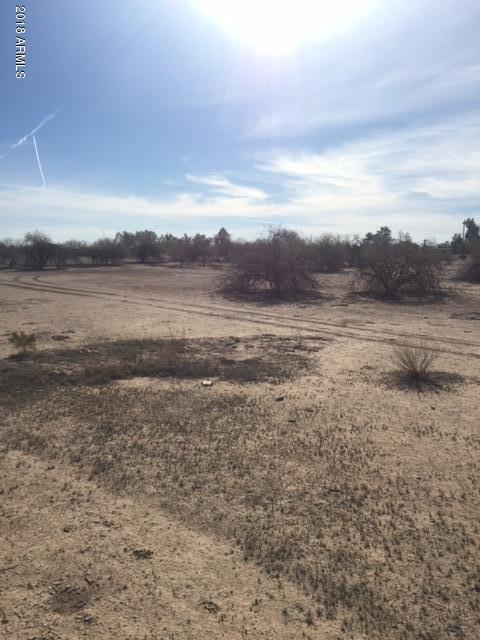 10981 N Johnson Road, Maricopa, AZ 85139 (MLS #5713608) :: Yost Realty Group at RE/MAX Casa Grande