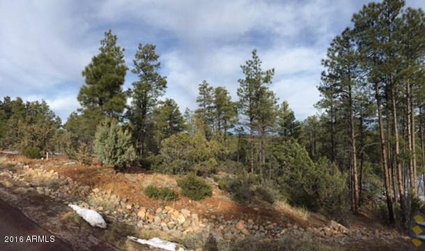 1725 S Pleasantview Drive, Show Low, AZ 85901 (MLS #5715776) :: Brett Tanner Home Selling Team