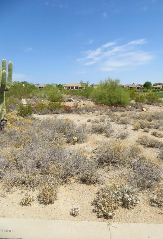 7130 E Saddleback Street, Mesa, AZ 85207 (MLS #5716646) :: The Kenny Klaus Team
