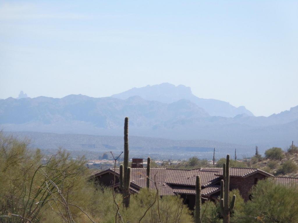 16046 Ringtail Trail - Photo 1