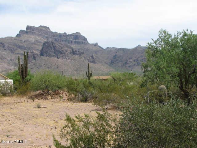 251 S Val Vista Road, Apache Junction, AZ 85119 (MLS #5722537) :: Kepple Real Estate Group