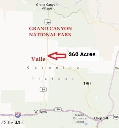 00 N Hwy 64 Road, Valle, AZ 86046 (MLS #5723601) :: Riddle Realty Group - Keller Williams Arizona Realty