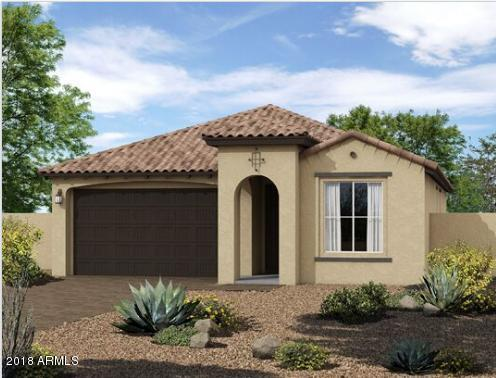 12366 N 144TH Drive, Surprise, AZ 85379 (MLS #5725255) :: Occasio Realty