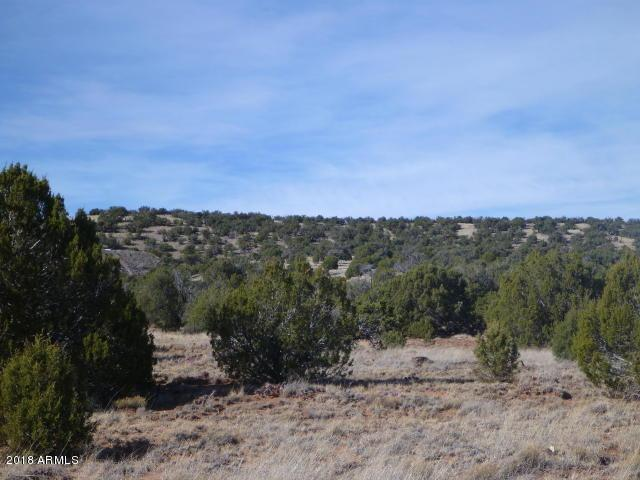 0000 Show Low Pines, Show Low, AZ 85901 (MLS #5726405) :: Brett Tanner Home Selling Team