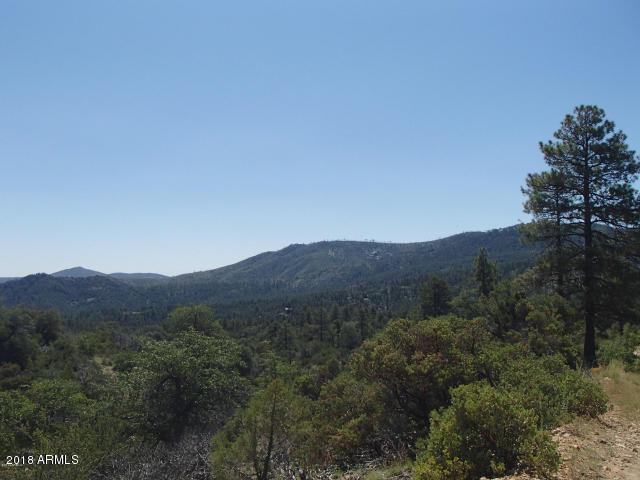22650 S Towers Mountain Road, Crown King, AZ 86343 (MLS #5730122) :: My Home Group