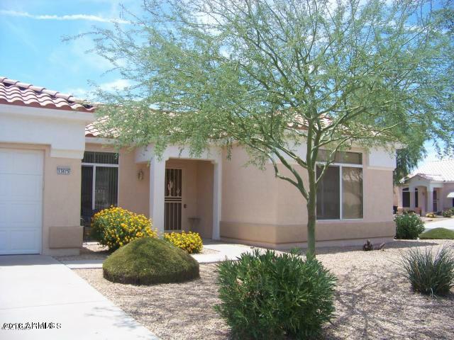 13675 W Ravenswood Drive, Sun City West, AZ 85375 (MLS #5734040) :: Private Client Team