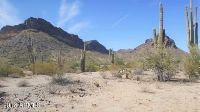 27382 N Dolores Place, Queen Creek, AZ 85142 (MLS #5734988) :: The Daniel Montez Real Estate Group