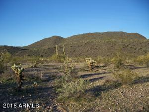 38912 W Mountain View Road, Tonopah, AZ 85354 (MLS #5736731) :: The Daniel Montez Real Estate Group
