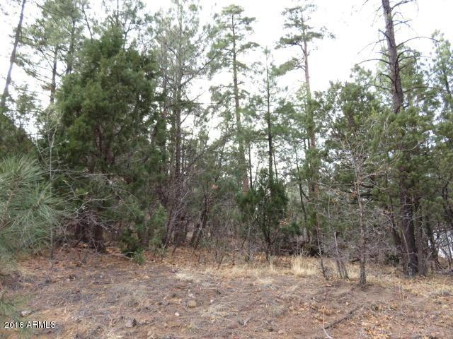 2906 Lockwood Drive, Lakeside, AZ 85929 (MLS #5742726) :: Essential Properties, Inc.