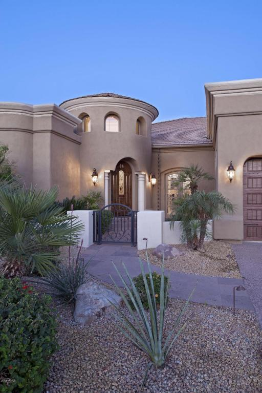 10438 N 110TH Place, Scottsdale, AZ 85259 (MLS #5744298) :: My Home Group