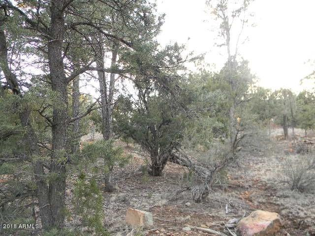3490 Carefree Road, Heber, AZ 85928 (MLS #5745800) :: The Garcia Group @ My Home Group