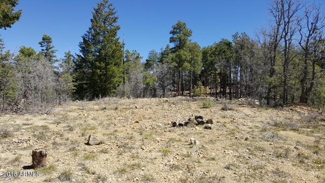 0 Tall Pine Trail, Prescott, AZ 86303 (MLS #5752466) :: Brett Tanner Home Selling Team