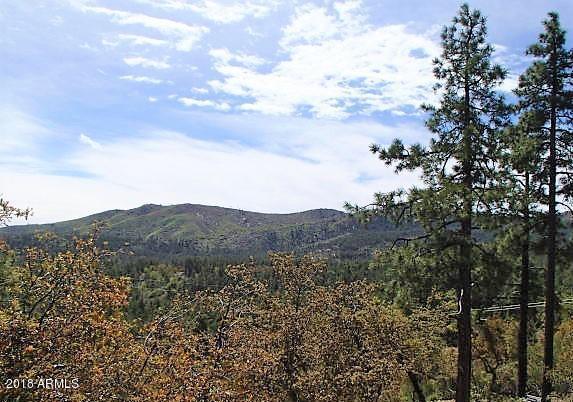 6565 E Mountain View Road, Crown King, AZ 86343 (MLS #5752695) :: Occasio Realty