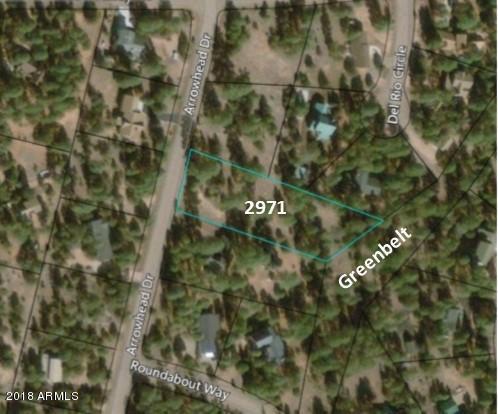 2971 Arrowhead Drive, Overgaard, AZ 85933 (MLS #5753636) :: Brett Tanner Home Selling Team