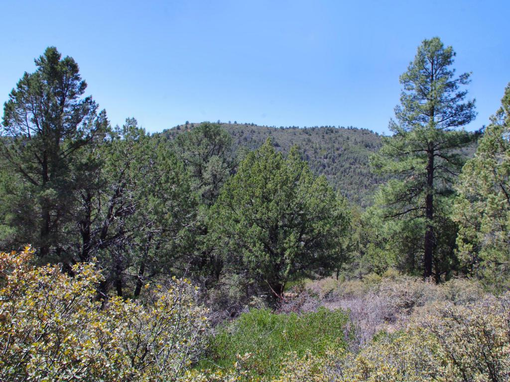 1T Arrowhead Canyon - Photo 1