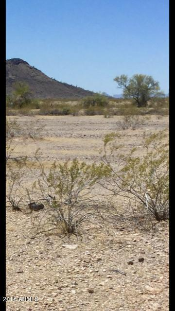 0 W Camelback Lot #193 Road, Tonopah, AZ 85354 (MLS #5762013) :: Scott Gaertner Group