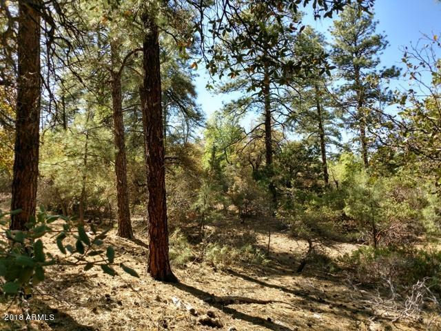 B Lonesome Hawk Drive, Prescott, AZ 86305 (MLS #5763104) :: Brett Tanner Home Selling Team