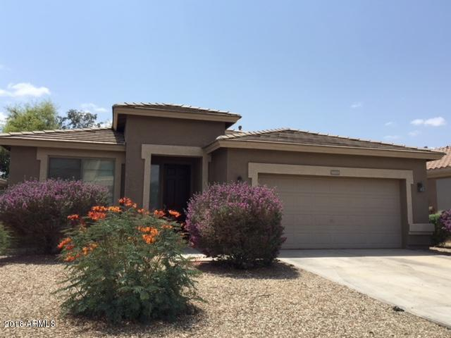 16223 W Evans Drive, Surprise, AZ 85379 (MLS #5767049) :: Essential Properties, Inc.