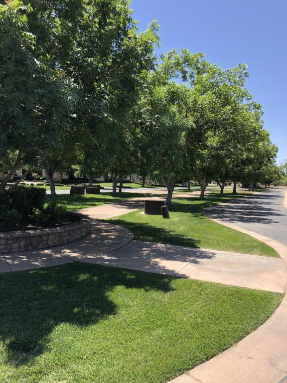 20585 E Pecan Lane, Queen Creek, AZ 85142 (MLS #5767243) :: Yost Realty Group at RE/MAX Casa Grande