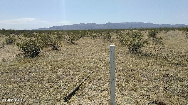 22907 W Cavedale Drive, Wittmann, AZ 85361 (MLS #5768936) :: Essential Properties, Inc.