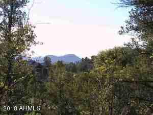 1807 E Desert Mimosa Drive, Payson, AZ 85541 (MLS #5769754) :: Phoenix Property Group