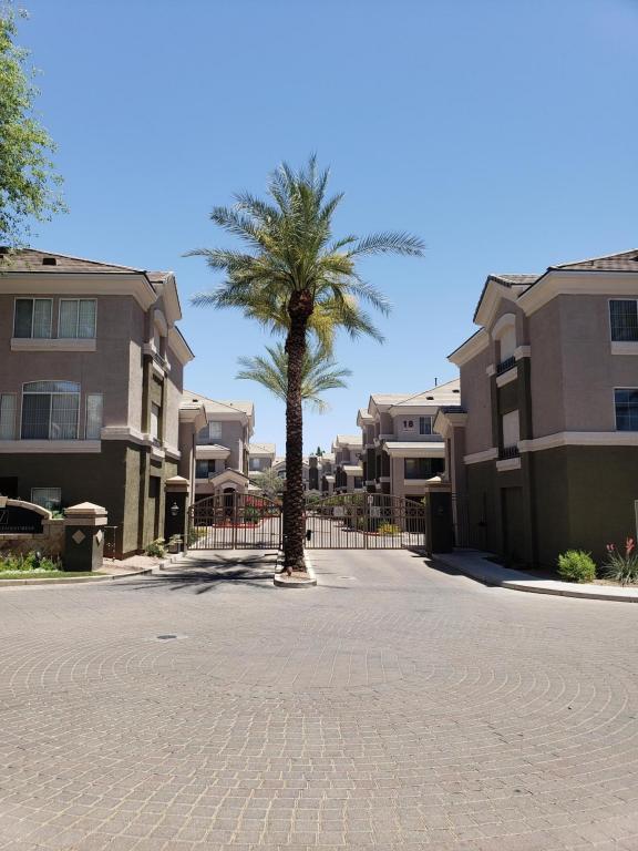 4455 E Paradise Village Parkway W #1077, Phoenix, AZ 85032 (MLS #5771715) :: My Home Group